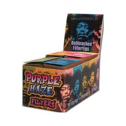 Filtertips Purple Haze