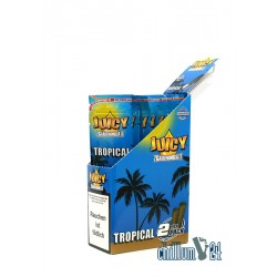 Juicy Jays Blunts TROPICAL 2er-Pack Box 25 Stk