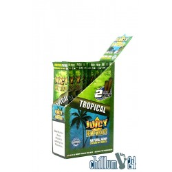 Juicy Hemp Wraps 2x Tropical