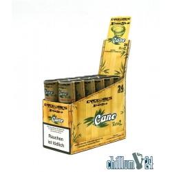 Box mit 12x Cyclone Cane Xtra Slo 2er