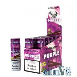 Box 12x2 Cyclone Cone Blunts Purple