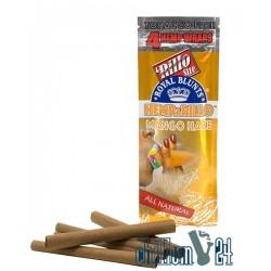 Royal Blunts Hemparillo Mango Haze 4 Stk.